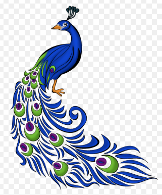 Show Beautiful Peacock Drawing - Drawing ideas