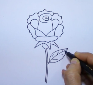 How to draw a flower easy step by step for beginners